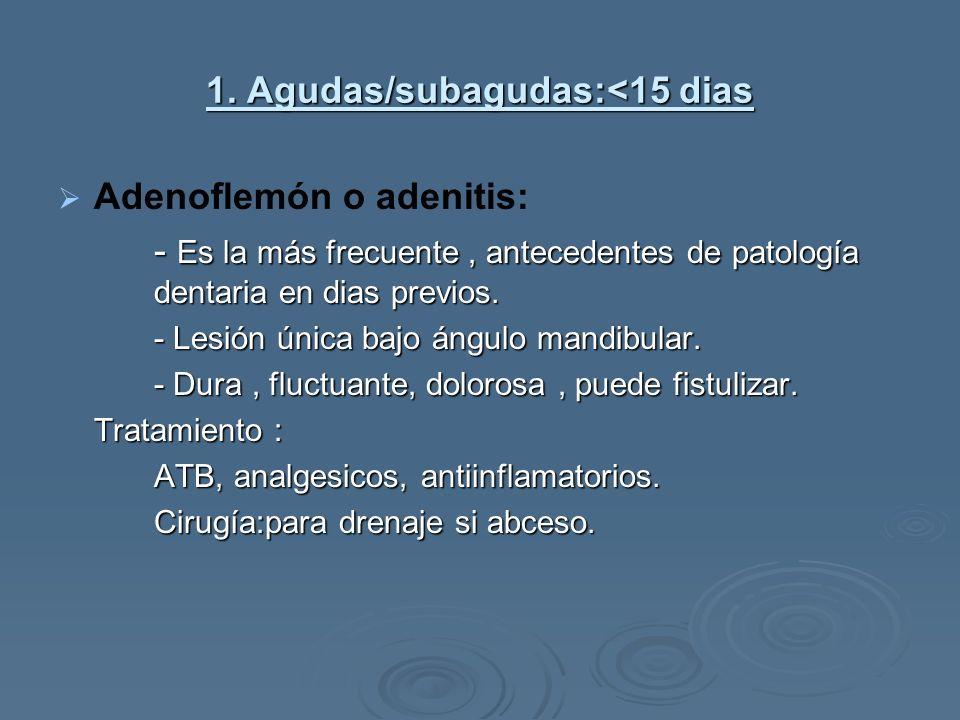 1. Agudas/subagudas:<15 dias Adenoflemón o adenitis: - Es la más frecuente, antecedentes de patología dentaria en dias previos. - Lesión única bajo án