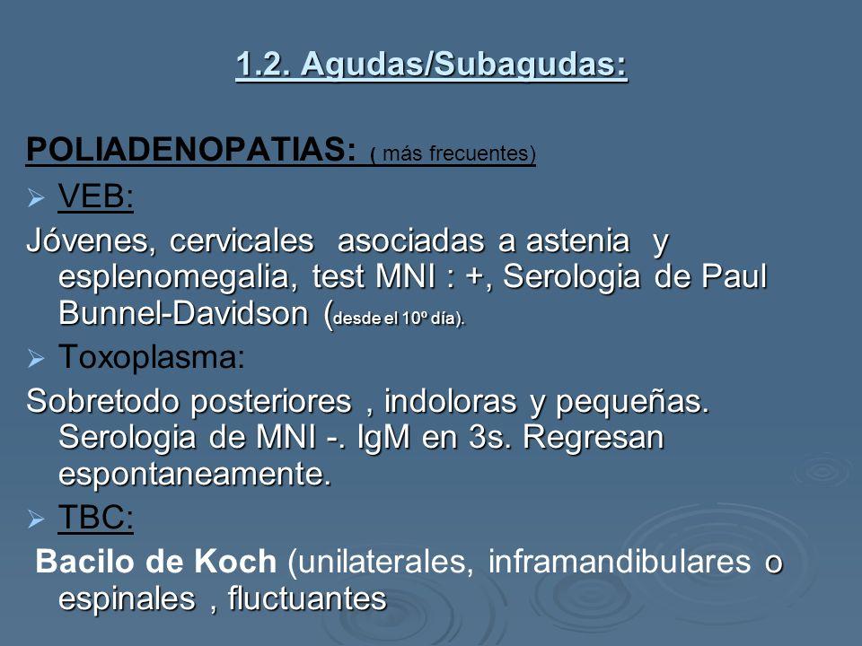 1.2. Agudas/Subagudas: POLIADENOPATIAS: ( más frecuentes) VEB: Jóvenes, cervicales asociadas a astenia y esplenomegalia, test MNI : +, Serologia de Pa
