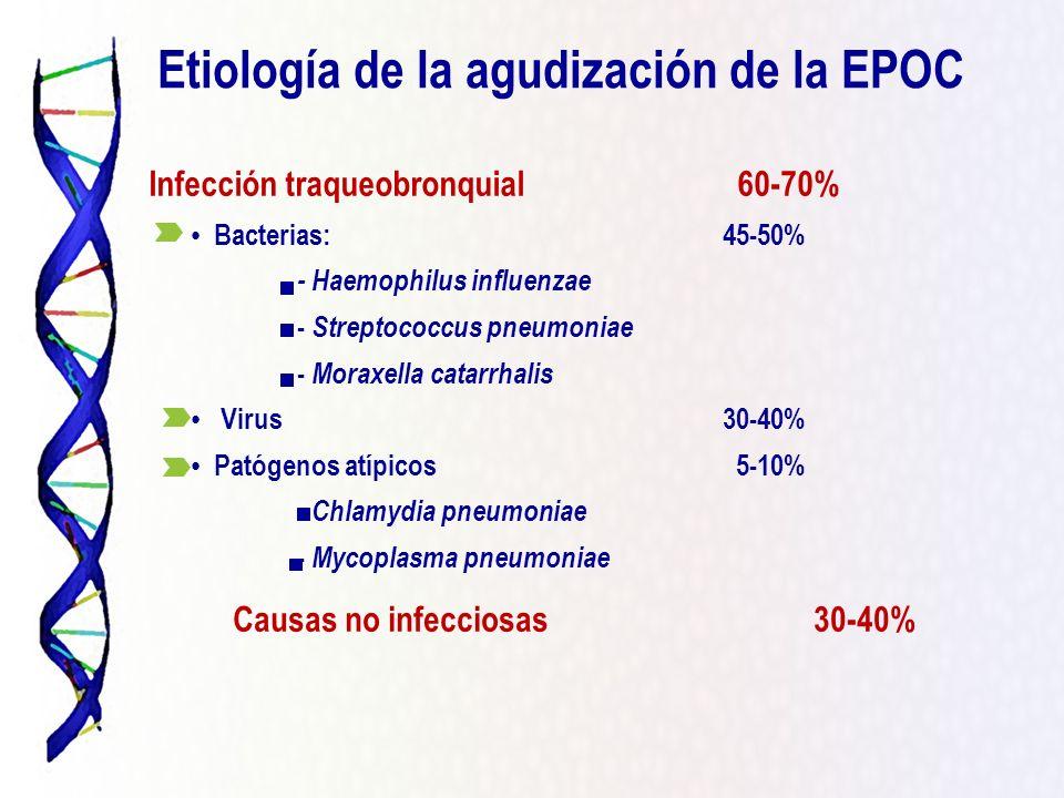 Bacterias:45-50% - Haemophilus influenzae - Streptococcus pneumoniae - Moraxella catarrhalis Virus30-40% Patógenos atípicos 5-10% - Chlamydia pneumoni