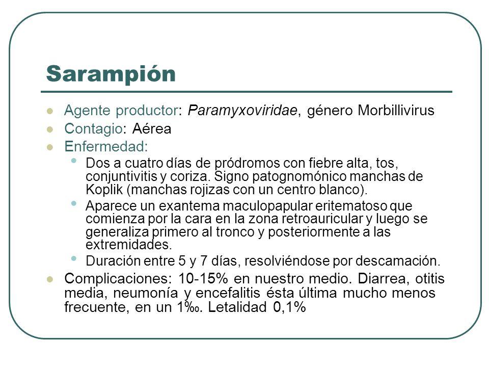 Sarampión Agente productor: Paramyxoviridae, género Morbillivirus Contagio: Aérea Enfermedad: Dos a cuatro días de pródromos con fiebre alta, tos, con