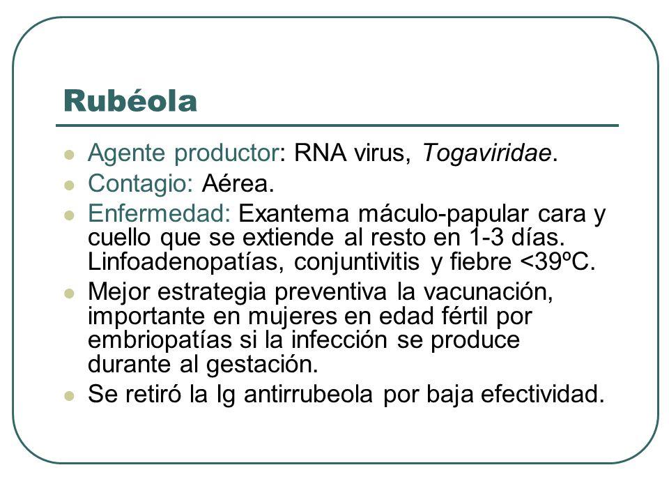 Rubéola Agente productor: RNA virus, Togaviridae. Contagio: Aérea. Enfermedad: Exantema máculo-papular cara y cuello que se extiende al resto en 1-3 d