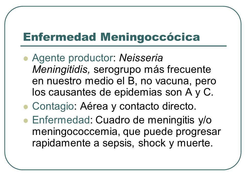 Enfermedad Meningoccócica Agente productor: Neisseria Meningitidis, serogrupo más frecuente en nuestro medio el B, no vacuna, pero los causantes de ep