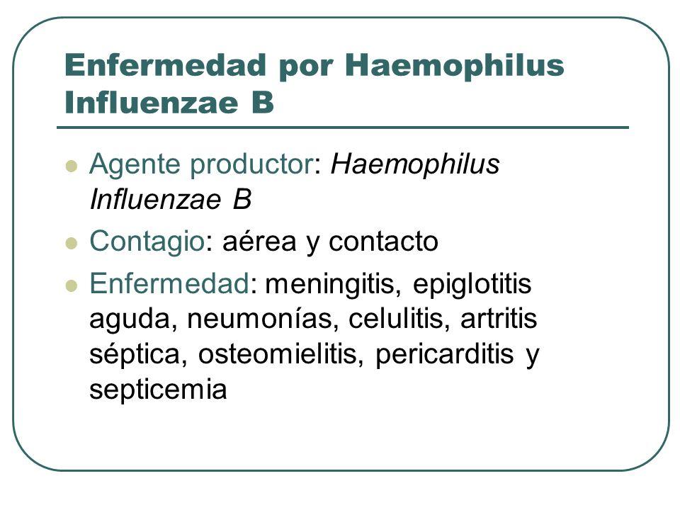 Enfermedad por Haemophilus Influenzae B Agente productor: Haemophilus Influenzae B Contagio: aérea y contacto Enfermedad: meningitis, epiglotitis agud
