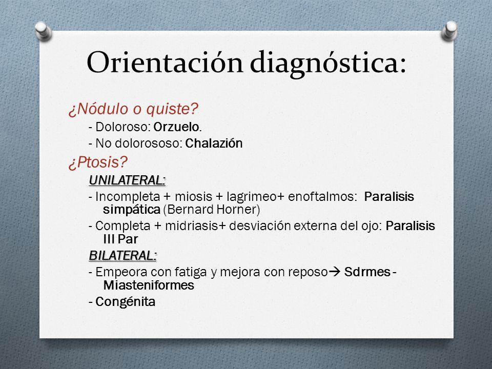 Orientación diagnóstica: ¿Nódulo o quiste? - Doloroso: Orzuelo. - No dolorososo: Chalazión ¿Ptosis?UNILATERAL: - Incompleta + miosis + lagrimeo+ enoft