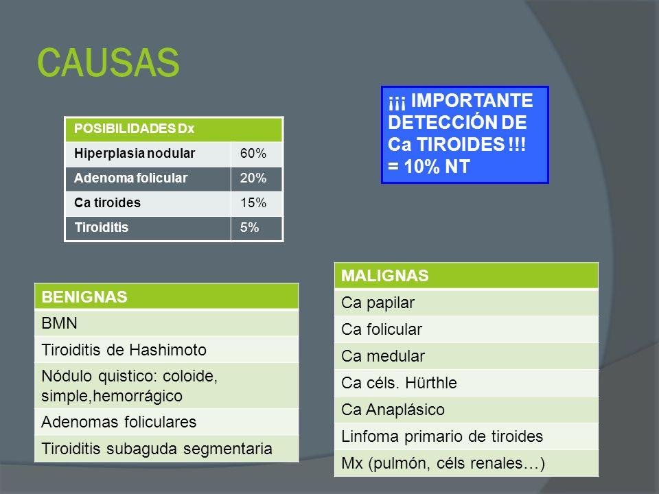 CLASIFICACIÓN NÚMEROACTIVIDAD FUNCIONALESTRUCTURA INTERNA ÚnicoFrío (no fx) = 80%.
