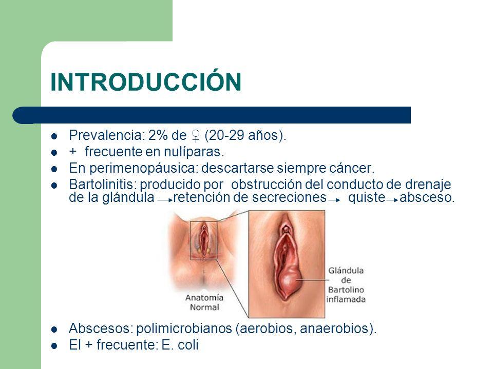 INTRODUCCIÓN Prevalencia: 2% de (20-29 años). + frecuente en nulíparas. En perimenopáusica: descartarse siempre cáncer. Bartolinitis: producido por ob