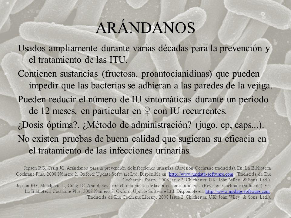 ARÁNDANOS Usados ampliamente durante varias décadas para la prevención y el tratamiento de las ITU. Contienen sustancias (fructosa, proantocianidinas)