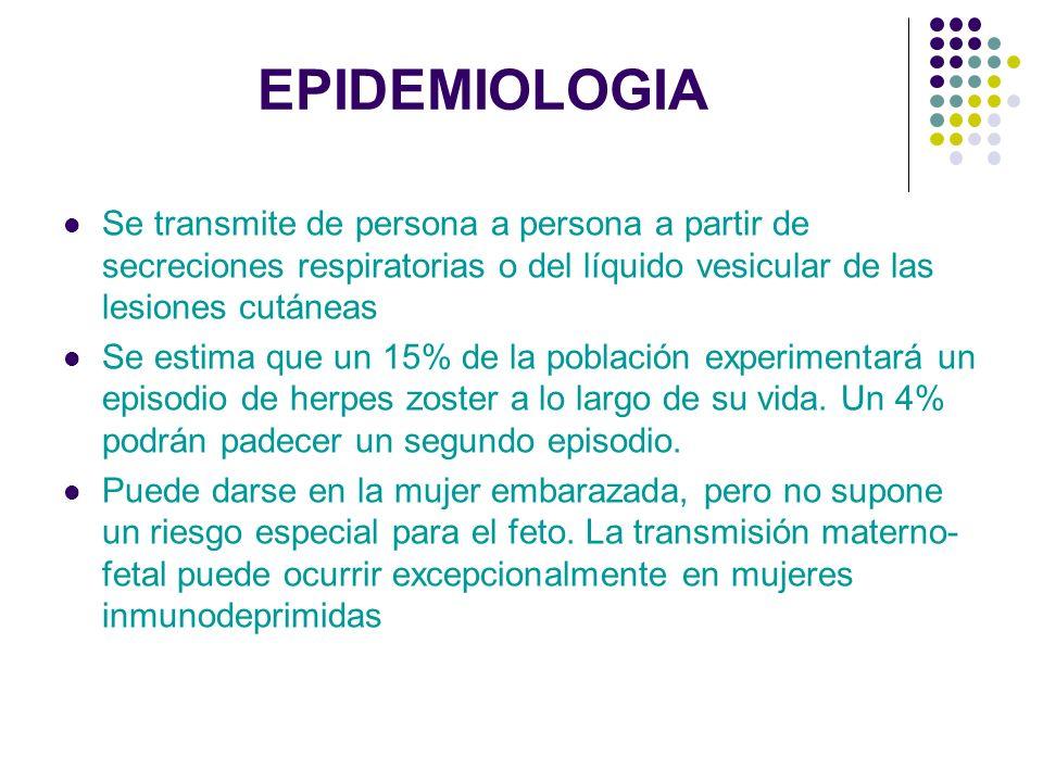 EPIDEMIOLOGIA Se transmite de persona a persona a partir de secreciones respiratorias o del líquido vesicular de las lesiones cutáneas Se estima que u