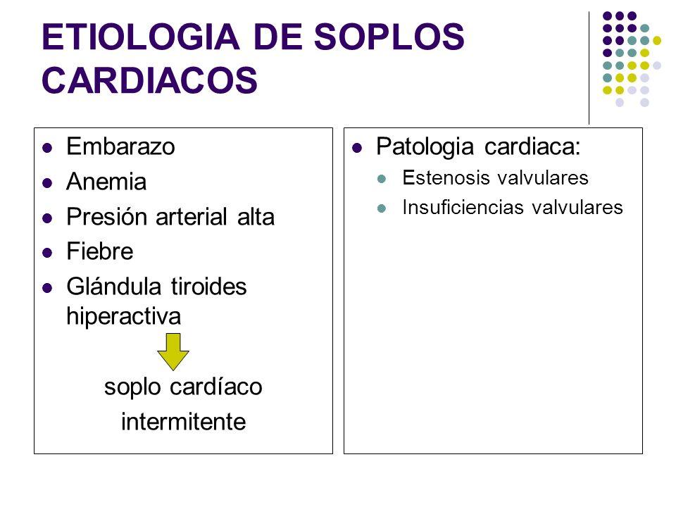 PRUEBAS COMPLEMENTARIAS Anamnesis y una exploración física (orientarnos hacia la etiología) ECG Radiografia de Torax Ecocardiograma