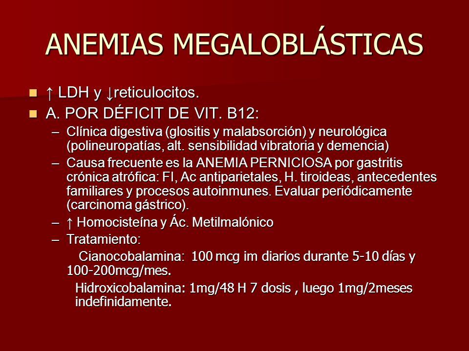 ANEMIAS MEGALOBLÁSTICAS LDH y reticulocitos. LDH y reticulocitos. A. POR DÉFICIT DE VIT. B12: A. POR DÉFICIT DE VIT. B12: –Clínica digestiva (glositis