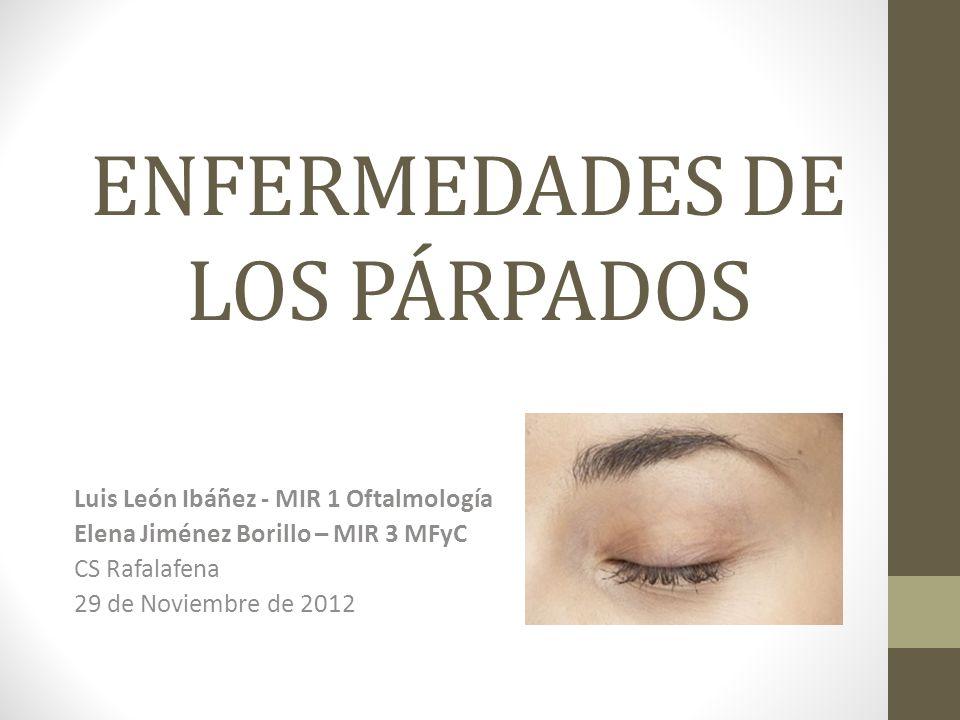 ENFERMEDADES DE LOS PÁRPADOS Luis León Ibáñez - MIR 1 Oftalmología Elena Jiménez Borillo – MIR 3 MFyC CS Rafalafena 29 de Noviembre de 2012