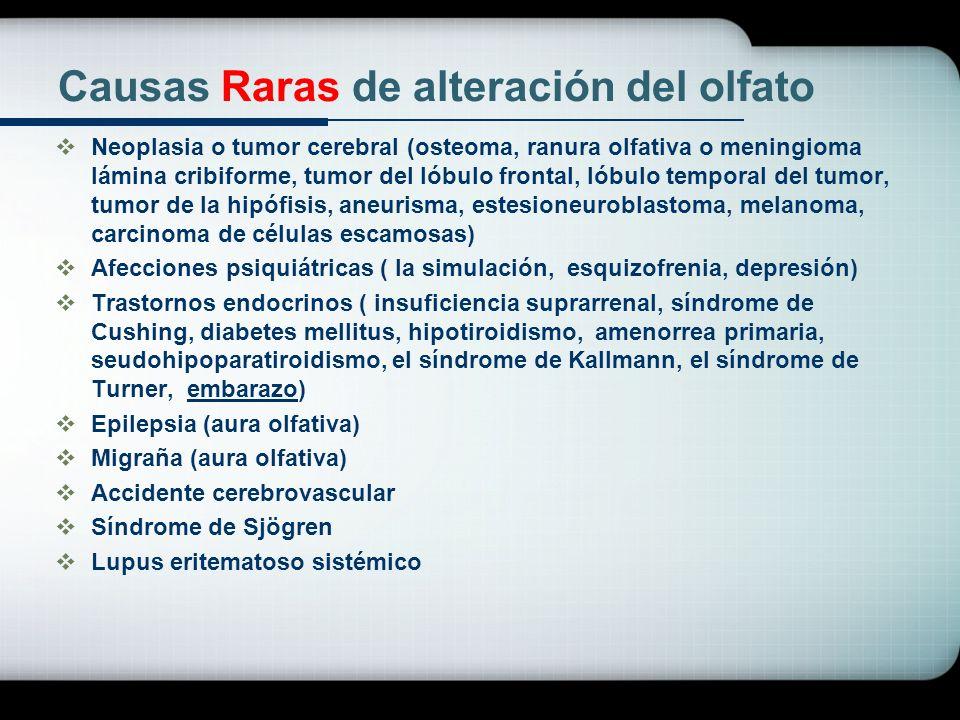 Causas Raras de alteración del olfato Neoplasia o tumor cerebral (osteoma, ranura olfativa o meningioma lámina cribiforme, tumor del lóbulo frontal, l