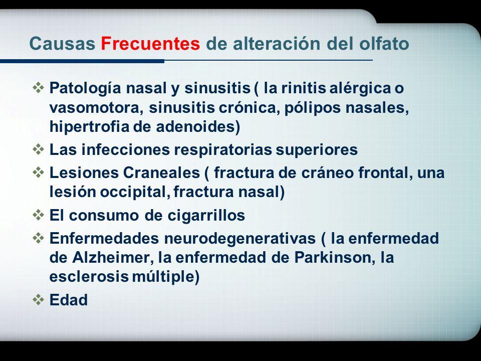 Causas Frecuentes de alteración del olfato Patología nasal y sinusitis ( la rinitis alérgica o vasomotora, sinusitis crónica, pólipos nasales, hipertr