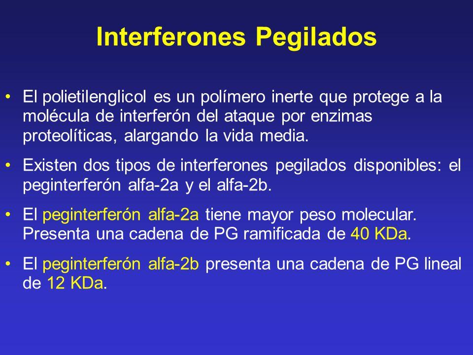 Interferones Pegilados El polietilenglicol es un polímero inerte que protege a la molécula de interferón del ataque por enzimas proteolíticas, alargan