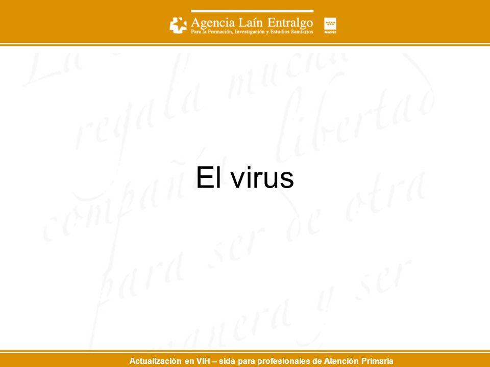 Actualización en VIH – sida para profesionales de Atención Primaria El virus