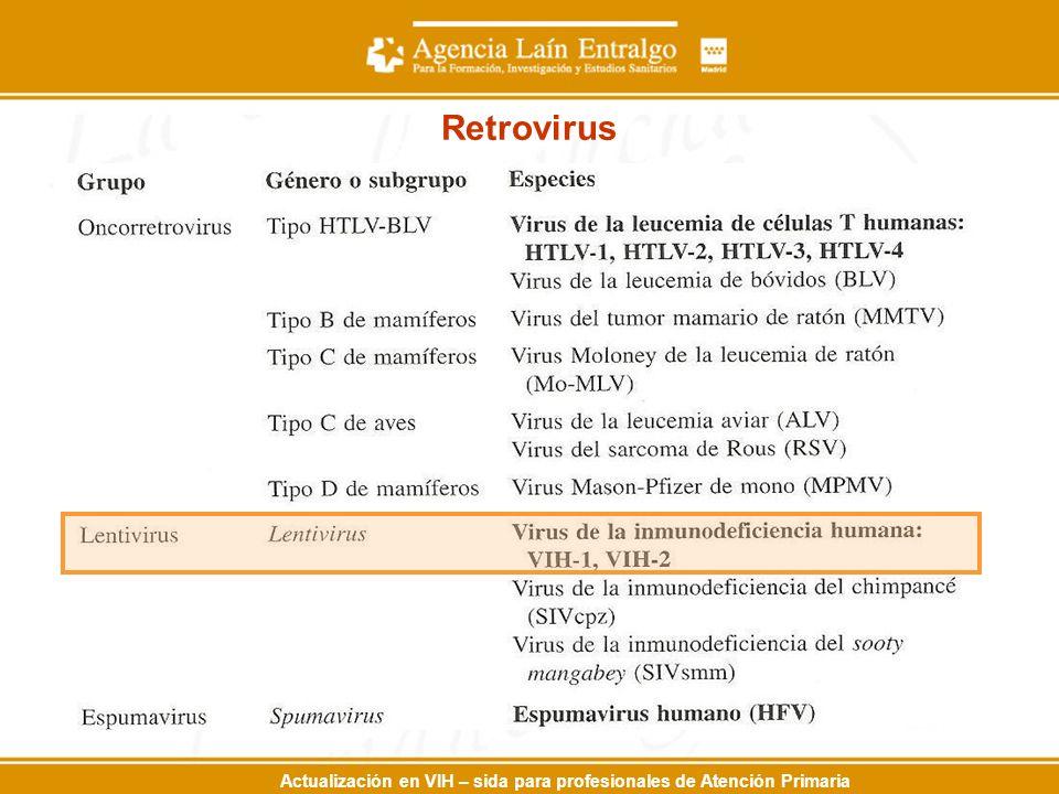 Actualización en VIH – sida para profesionales de Atención Primaria Retrovirus