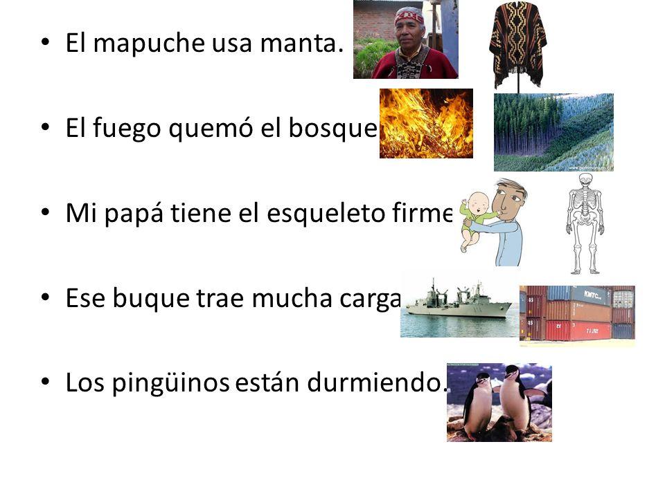 El mapuche usa manta. El fuego quemó el bosque. Mi papá tiene el esqueleto firme. Ese buque trae mucha carga. Los pingüinos están durmiendo.