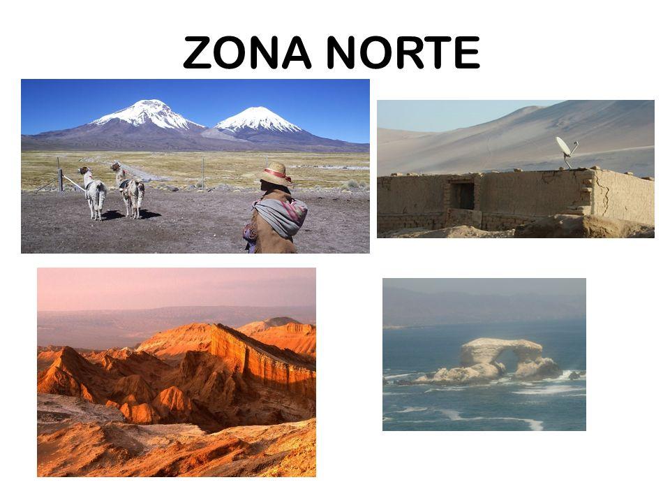 ZONA NORTE