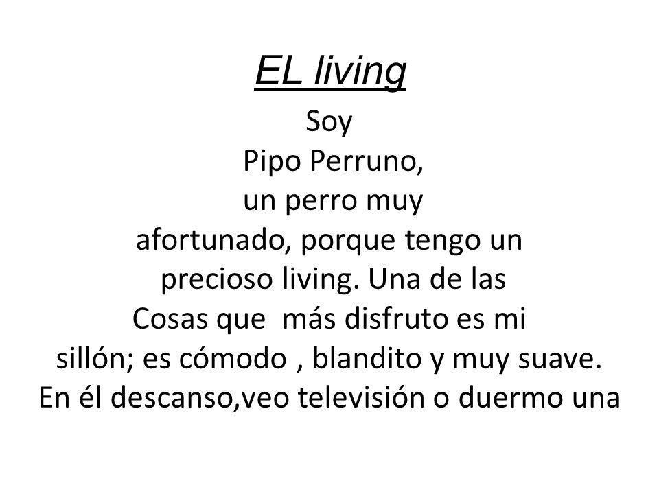 EL living Soy Pipo Perruno, un perro muy afortunado, porque tengo un precioso living. Una de las Cosas que más disfruto es mi sillón; es cómodo, bland