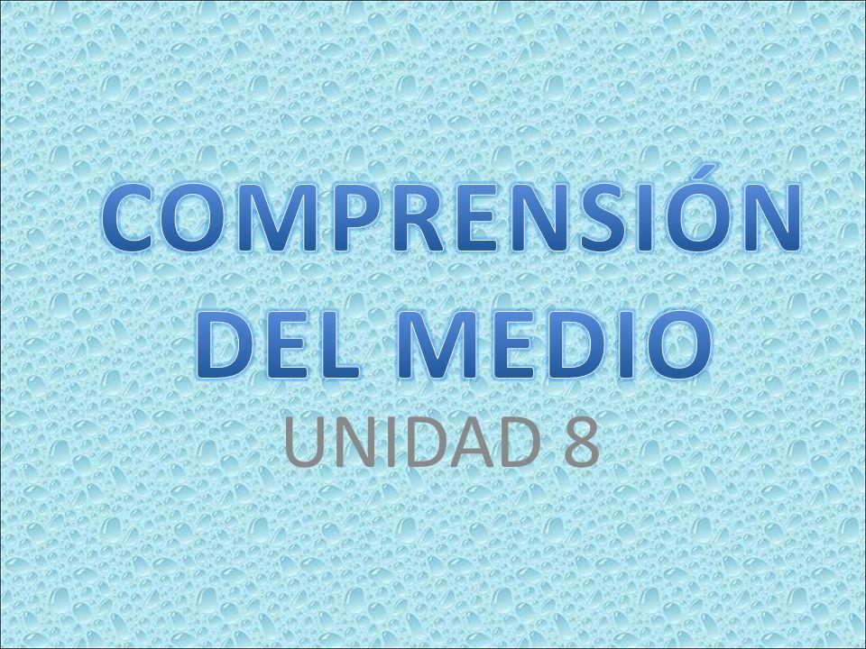 UNIDAD 8