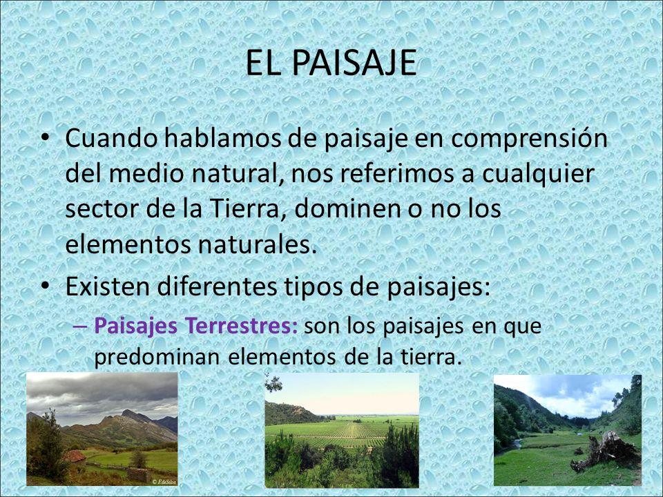 EL PAISAJE Cuando hablamos de paisaje en comprensión del medio natural, nos referimos a cualquier sector de la Tierra, dominen o no los elementos naturales.