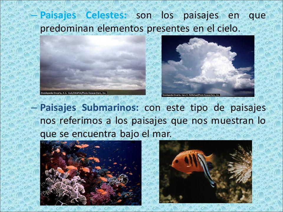 – Paisajes Celestes: son los paisajes en que predominan elementos presentes en el cielo.