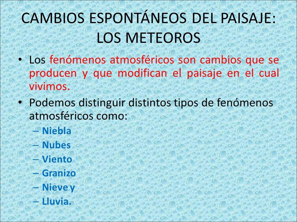 CAMBIOS ESPONTÁNEOS DEL PAISAJE: LOS METEOROS Los fenómenos atmosféricos son cambios que se producen y que modifican el paisaje en el cual vivimos.