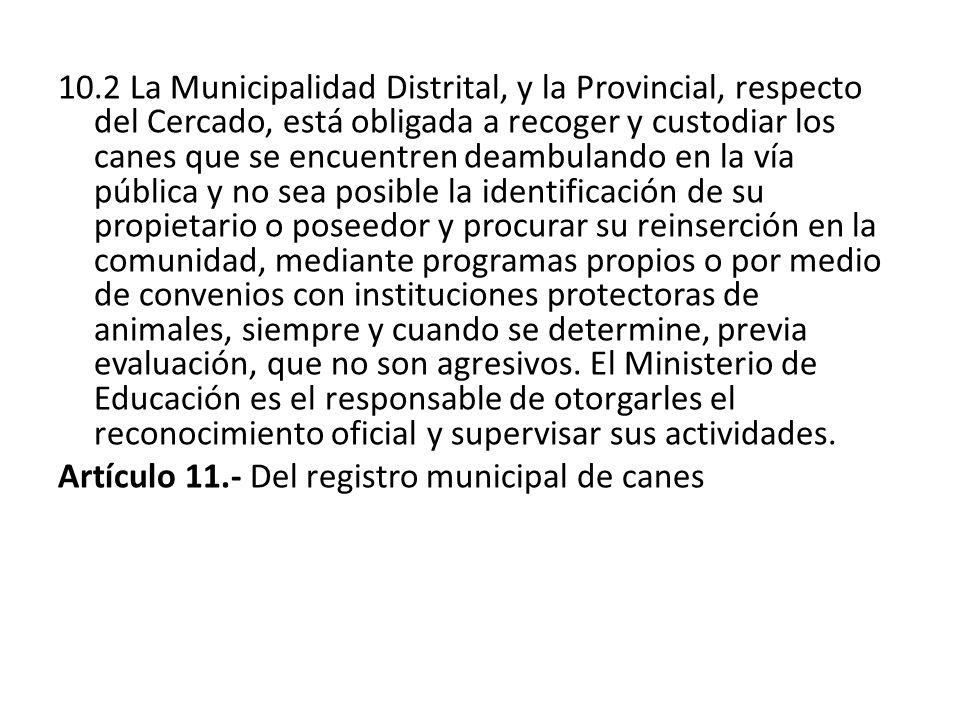 10.2 La Municipalidad Distrital, y la Provincial, respecto del Cercado, está obligada a recoger y custodiar los canes que se encuentren deambulando en