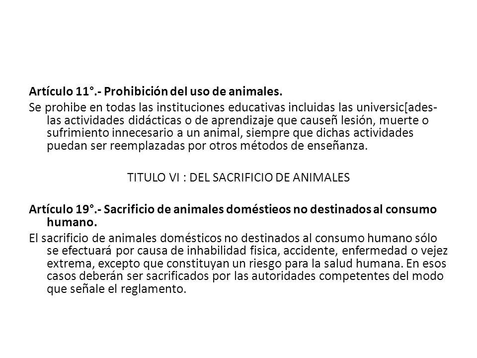 Artículo 11°.- Prohibición del uso de animales. Se prohibe en todas las instituciones educativas incluidas las universic[ades- las actividades didácti