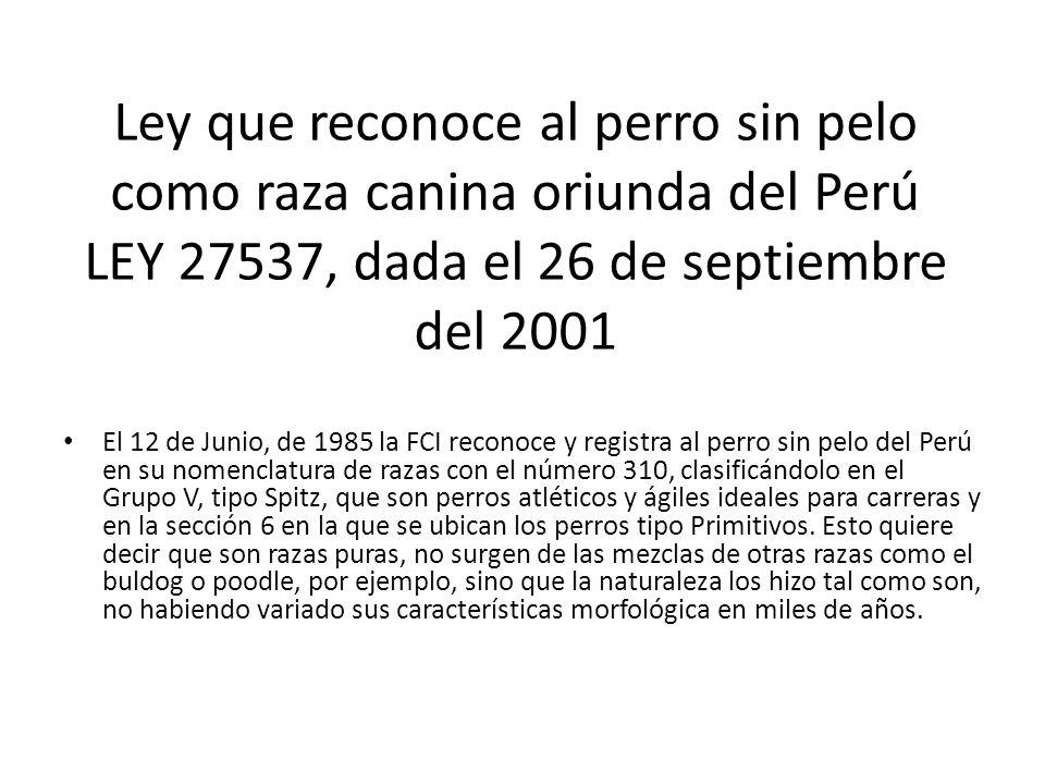 Ley que reconoce al perro sin pelo como raza canina oriunda del Perú LEY 27537, dada el 26 de septiembre del 2001 El 12 de Junio, de 1985 la FCI recon