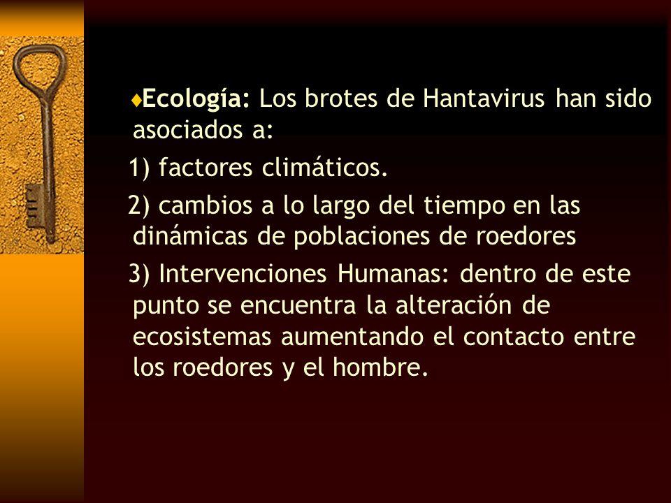Ecología: Los brotes de Hantavirus han sido asociados a: 1) factores climáticos. 2) cambios a lo largo del tiempo en las dinámicas de poblaciones de r