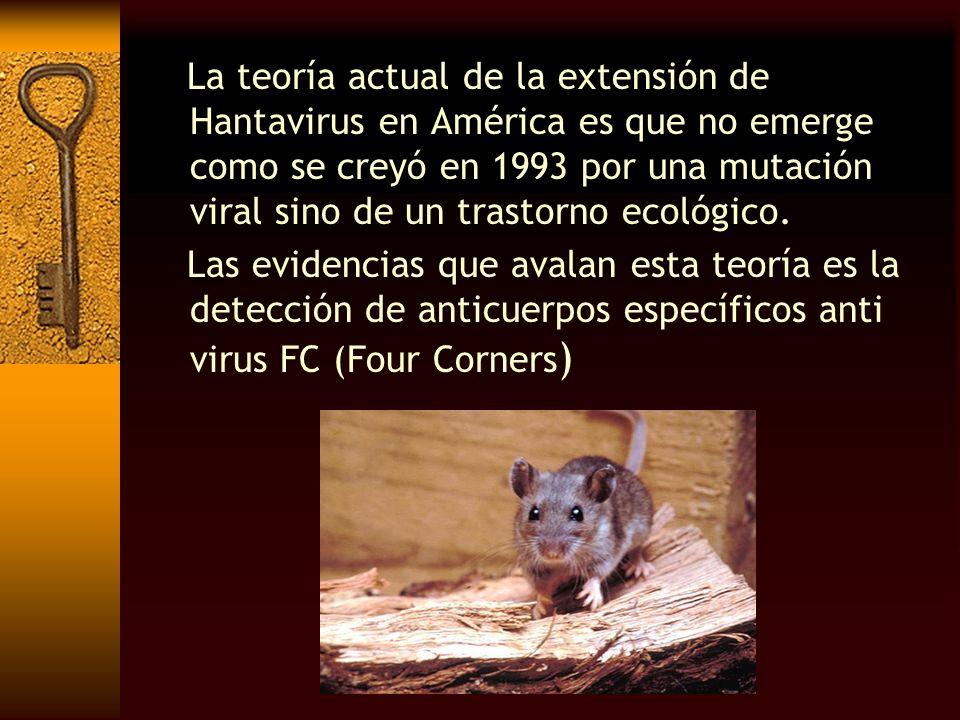 La teoría actual de la extensión de Hantavirus en América es que no emerge como se creyó en 1993 por una mutación viral sino de un trastorno ecológico