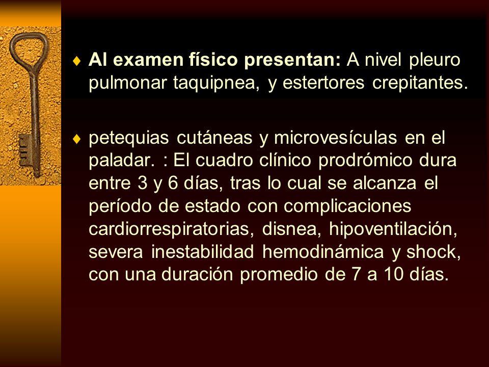 Al examen físico presentan: A nivel pleuro pulmonar taquipnea, y estertores crepitantes. petequias cutáneas y microvesículas en el paladar. : El cuadr