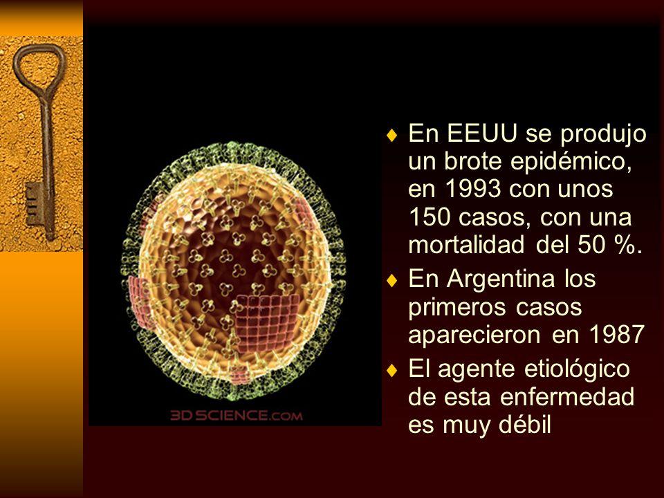 En EEUU se produjo un brote epidémico, en 1993 con unos 150 casos, con una mortalidad del 50 %. En Argentina los primeros casos aparecieron en 1987 El