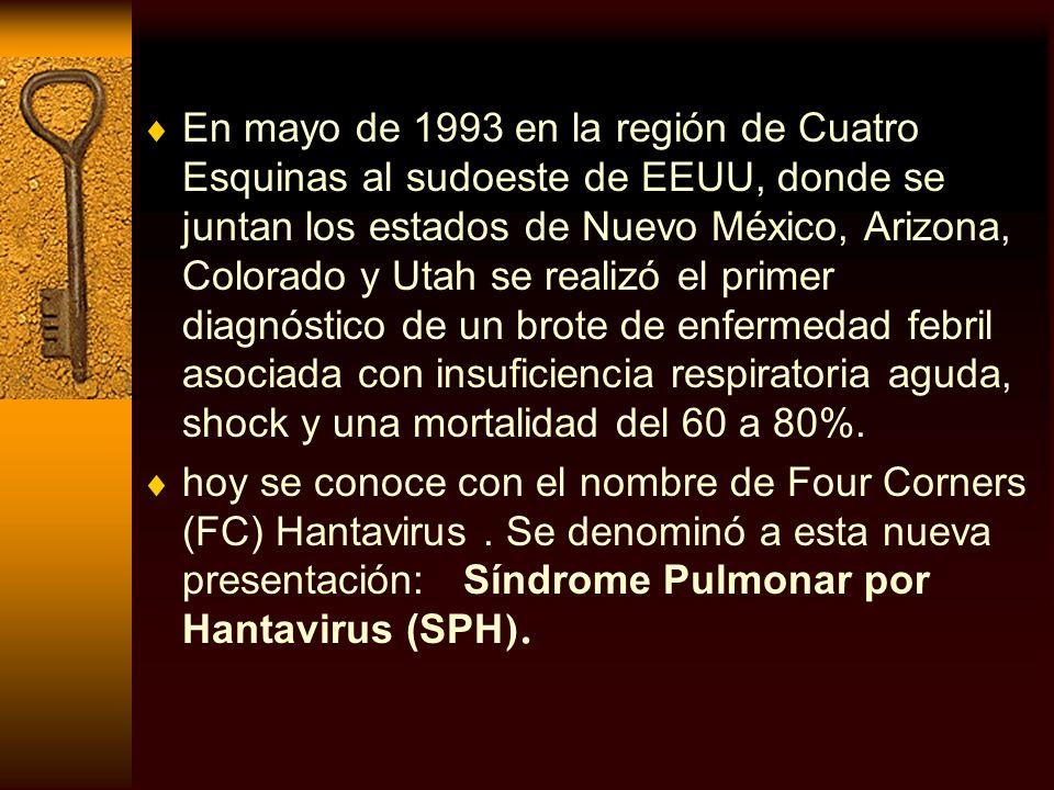 En mayo de 1993 en la región de Cuatro Esquinas al sudoeste de EEUU, donde se juntan los estados de Nuevo México, Arizona, Colorado y Utah se realizó