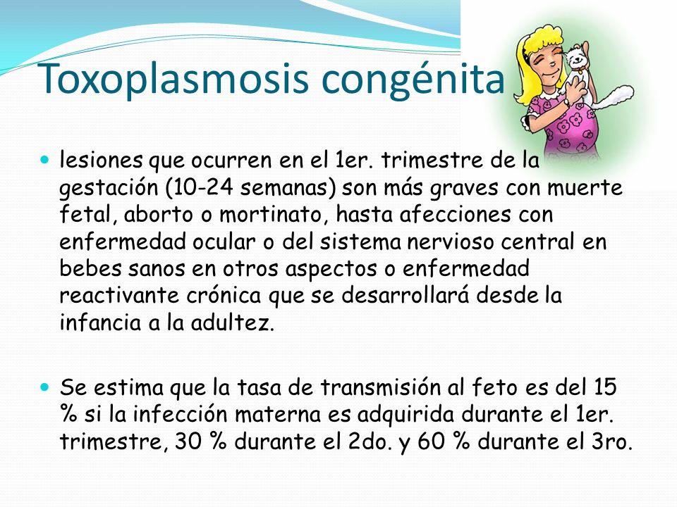 Toxoplasmosis congénita lesiones que ocurren en el 1er. trimestre de la gestación (10-24 semanas) son más graves con muerte fetal, aborto o mortinato,