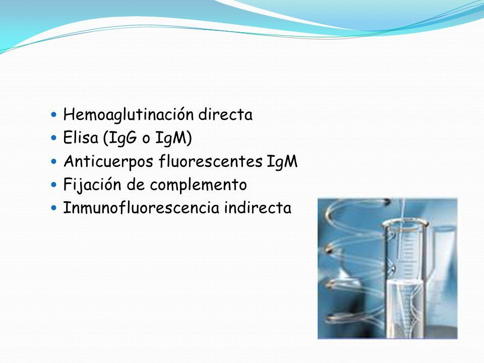 Hemoaglutinación directa Elisa (IgG o IgM) Anticuerpos fluorescentes IgM Fijación de complemento Inmunofluorescencia indirecta
