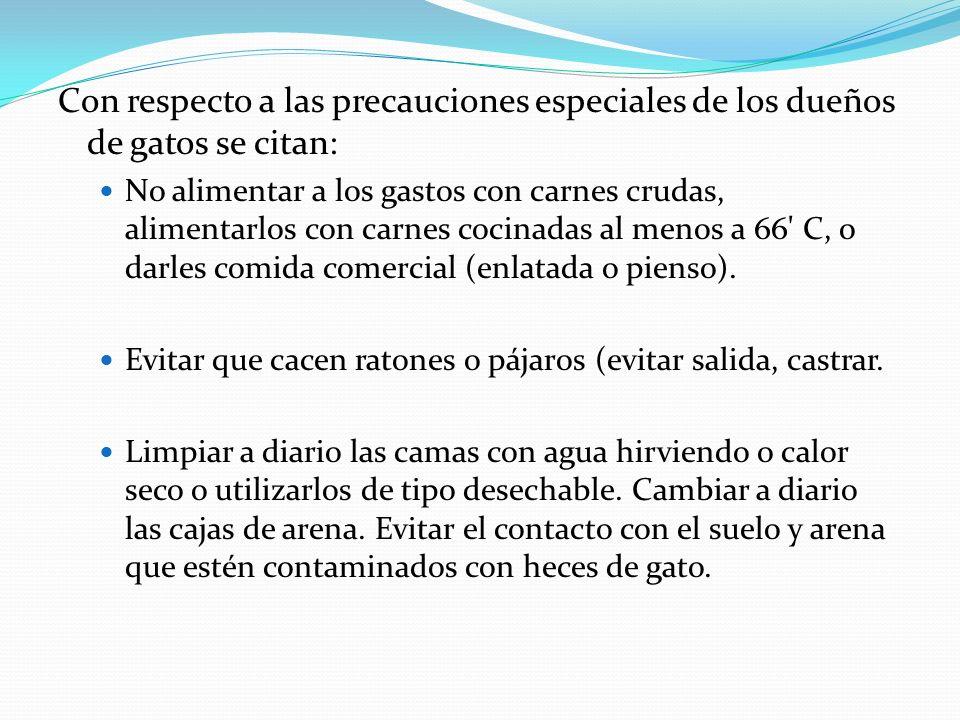 Con respecto a las precauciones especiales de los dueños de gatos se citan: No alimentar a los gastos con carnes crudas, alimentarlos con carnes cocin