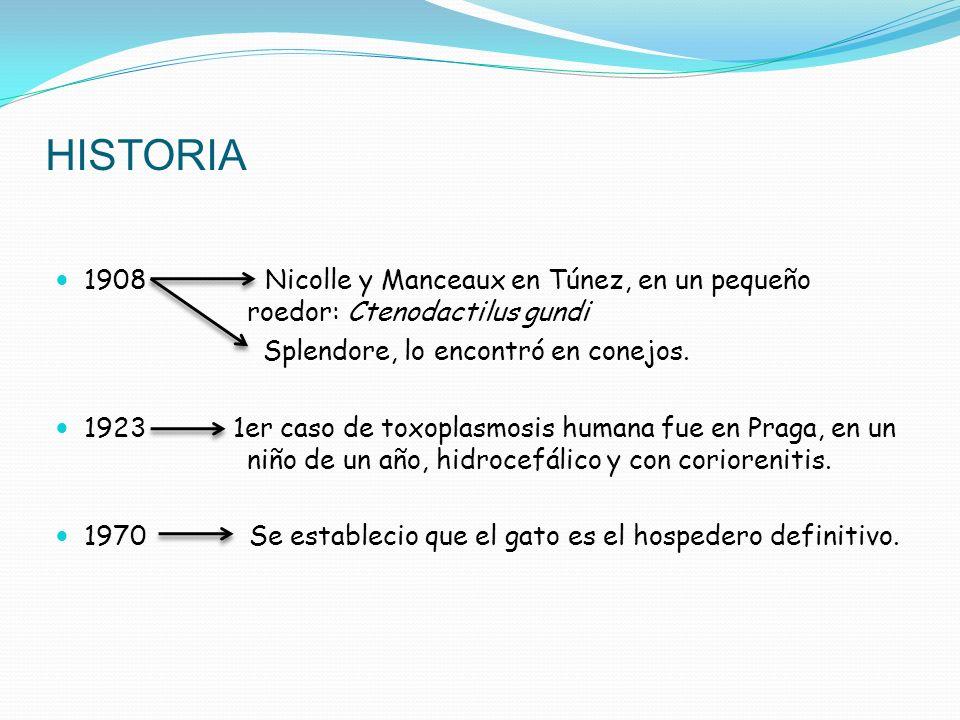 HISTORIA 1908 Nicolle y Manceaux en Túnez, en un pequeño roedor: Ctenodactilus gundi Splendore, lo encontró en conejos. 1923 1er caso de toxoplasmosis