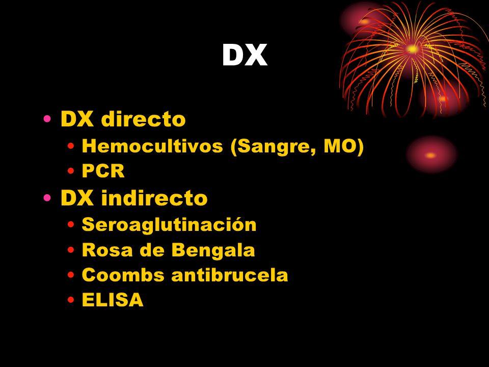 DX DX directo Hemocultivos (Sangre, MO) PCR DX indirecto Seroaglutinación Rosa de Bengala Coombs antibrucela ELISA