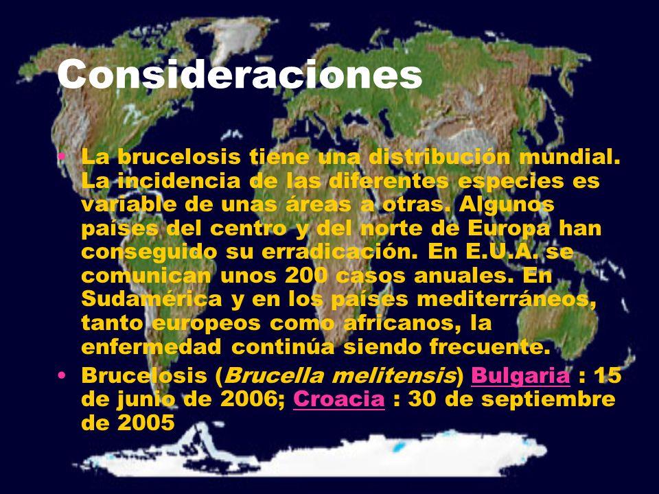 Consideraciones La brucelosis tiene una distribución mundial. La incidencia de las diferentes especies es variable de unas áreas a otras. Algunos país