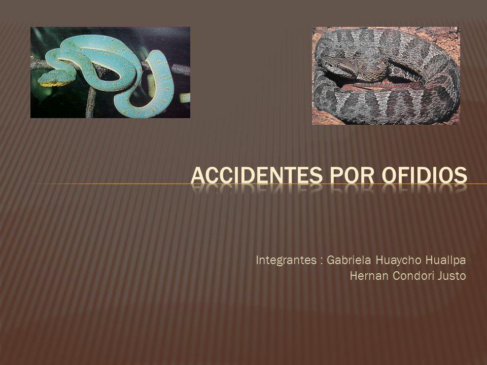 Integrantes : Gabriela Huaycho Huallpa Hernan Condori Justo