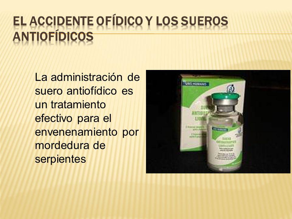 La administración de suero antiofídico es un tratamiento efectivo para el envenenamiento por mordedura de serpientes