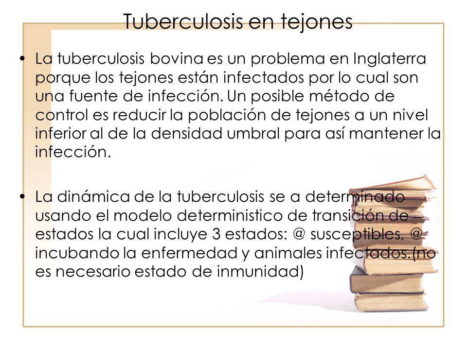Tuberculosis en tejones La tuberculosis bovina es un problema en Inglaterra porque los tejones están infectados por lo cual son una fuente de infecció