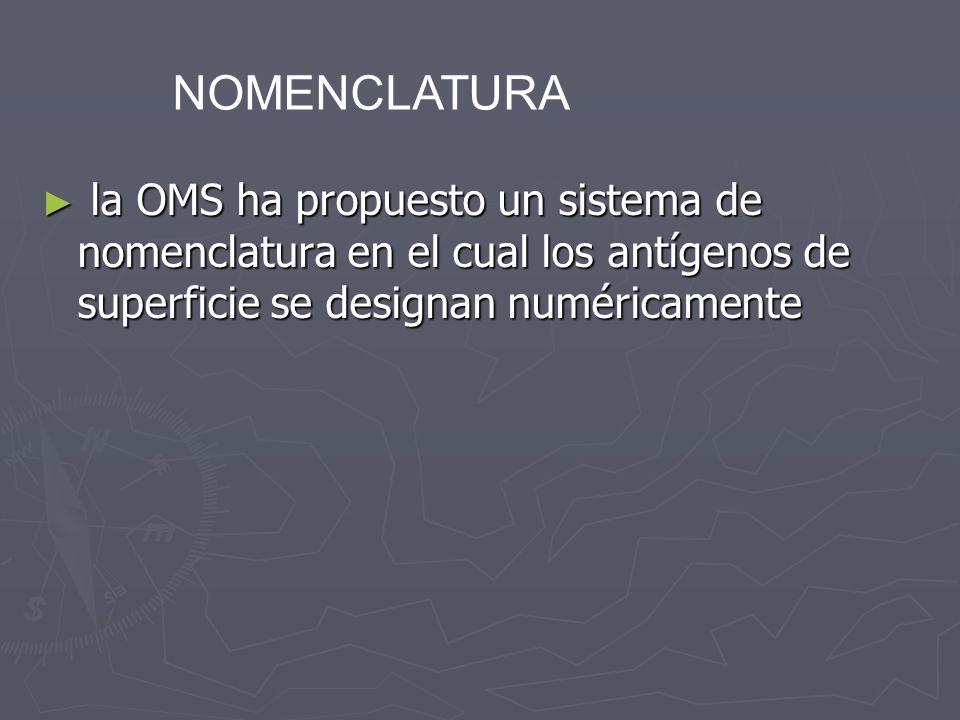 la OMS ha propuesto un sistema de nomenclatura en el cual los antígenos de superficie se designan numéricamente la OMS ha propuesto un sistema de nome