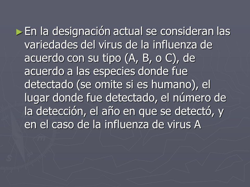 En la designación actual se consideran las variedades del virus de la influenza de acuerdo con su tipo (A, B, o C), de acuerdo a las especies donde fu