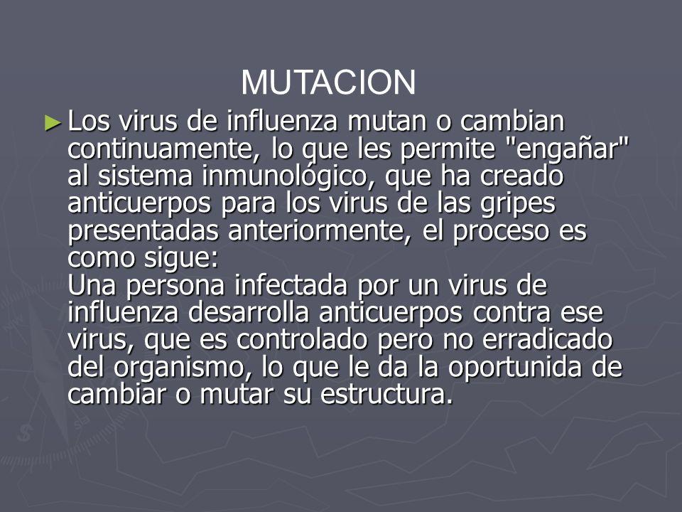 Los virus de influenza mutan o cambian continuamente, lo que les permite