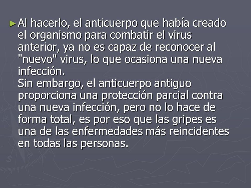 Al hacerlo, el anticuerpo que había creado el organismo para combatir el virus anterior, ya no es capaz de reconocer al