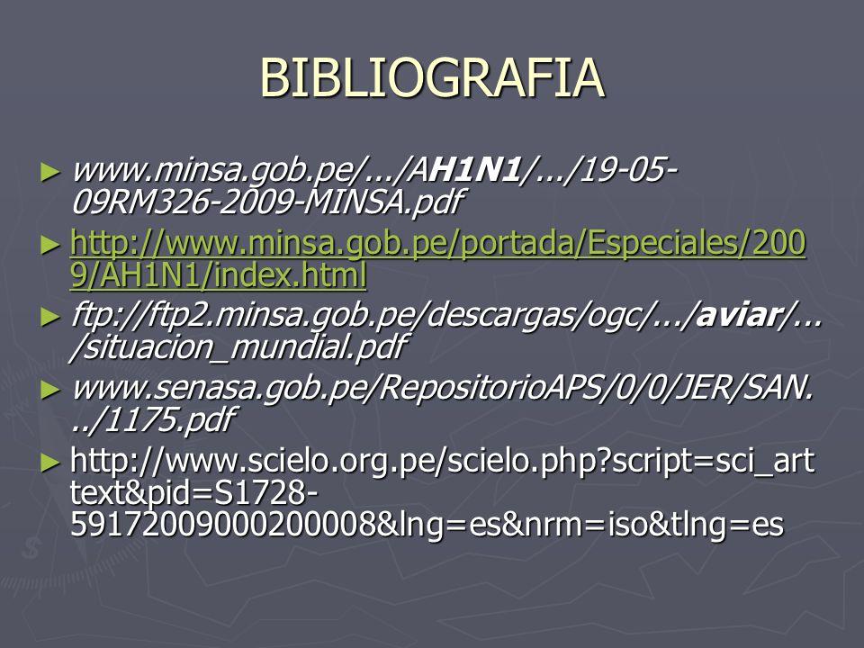 BIBLIOGRAFIA www.minsa.gob.pe/.../AH1N1/.../19-05- 09RM326-2009-MINSA.pdf www.minsa.gob.pe/.../AH1N1/.../19-05- 09RM326-2009-MINSA.pdf http://www.mins
