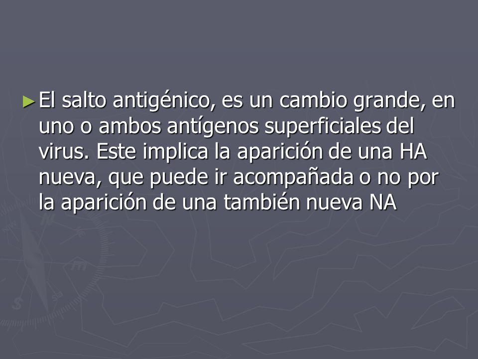 El salto antigénico, es un cambio grande, en uno o ambos antígenos superficiales del virus. Este implica la aparición de una HA nueva, que puede ir ac